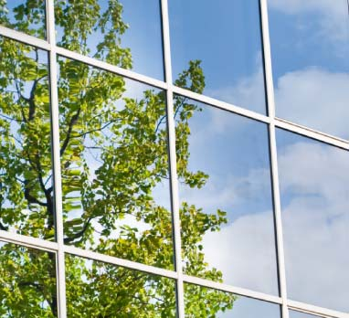 Sunn window cleaning for How to clean windows